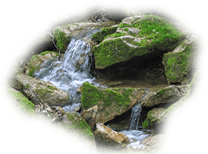 More About Intentional Living - Water running through rocks